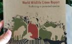 Tolérance zéro à l'égard du commerce illicite d'espèces sauvages