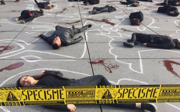 Une scène de crime pour dénoncer le massacre