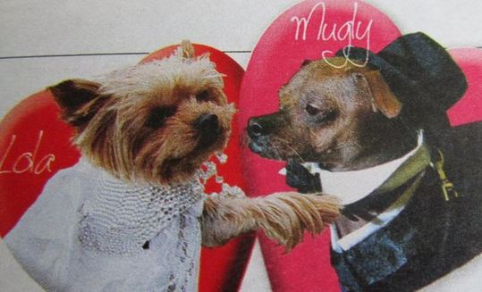 Les jeunes mariés Lola et Ugly Mugly