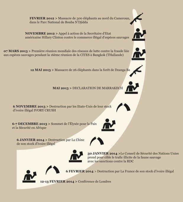(c) WWF France