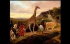 Une girafe arrive à Paris