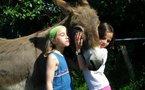 Michelle, l'amie des animaux, présente JULIOS
