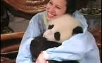 Tai Shan rentre en Chine