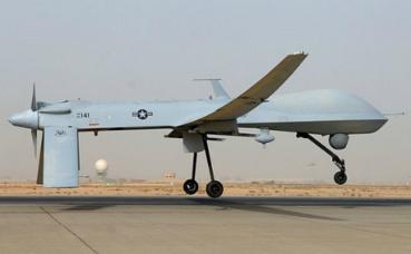 Exemple d'une drone. Photo (c) Julianne Showalter