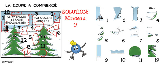 SOLUTION JEU d'observation du 1er novembre 2008