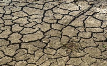 L'ONU craint une augmentation du nombre de victimes de la famine