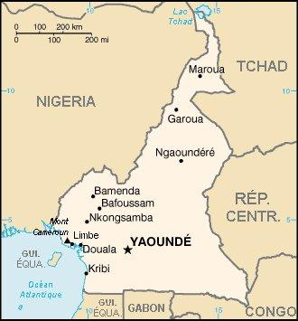 Chronique du Cameroun