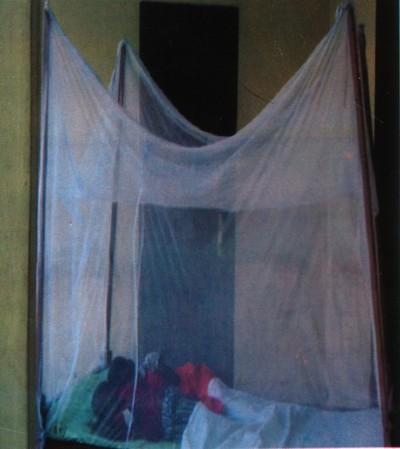 le moustiquaire imprégné : une solution à démocratiser (photo: PNLP)