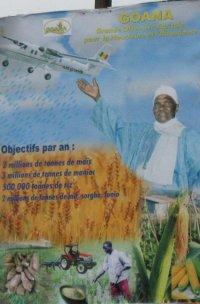 AGRICULTURE: LA SECONDE ANNEE DE LA G.O.A.N.A SOUS DE BONS AUSPICES