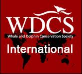 Les baleines à bosse en ligne de mire – l'Europe doit décider de leur destin