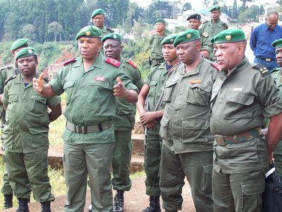 Guerre médiatique contre les FDLR
