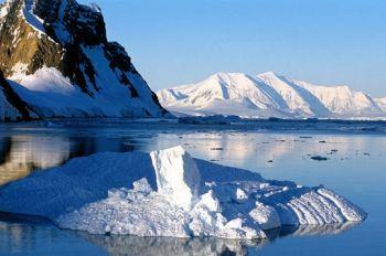 4e année polaire internationale : Peut-on anticiper les conséquences climatiques sur la biodiversité ? (4/4)