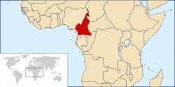 Cameroun : L'aide à la presse fait débat