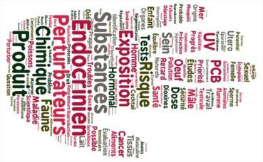 Les perturbateurs endocriniens sont des substances chimiques contenues dans de multiples objets de notre quotidien, et qui ont des effets néfastes sur notre santé. Image du domaine public.