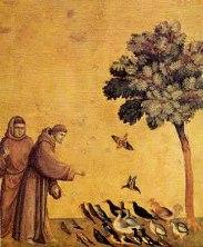 L'AMI DE LA NATURE ET DES ANIMAUX: Saint François d'Assise