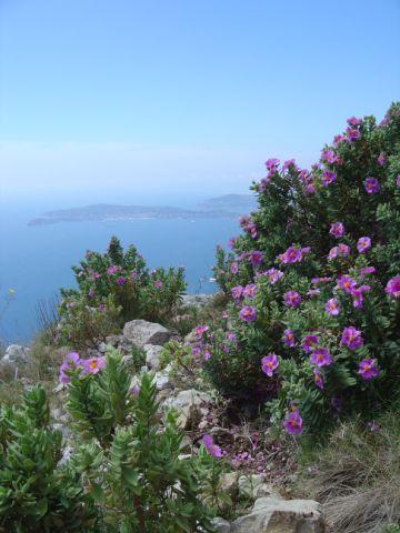 Crise du logement - la Riviera Française présente sont plan local de l'habitat pour 2010-2016
