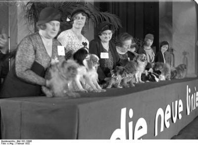 Exposition canine à Berlin en 1932