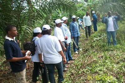 Le délégué du GIC présente son exploitataion cacaoyère au comité de crédit du CEPI. Photo (c) Joseph ETOAA