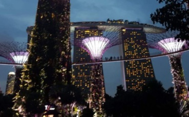 Garden by the bay. Photo prise par Sarah Barreiros.