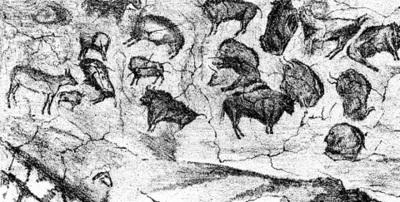 Grotte d'Altamira. Relevé du plafond aux polychromes publié par M. Sanz de Sautuola en 1880 (d'après Cartailhac, 1902).