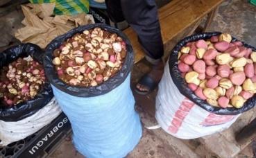 Le cola en vente au marché de Cosa (Conakry). Photo prise par l'auteur.