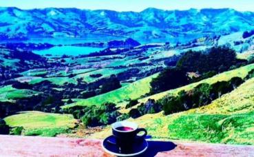 Les paysages diverses de Nouvelle-Zélande. Photo prise par Sarah Barreiros.