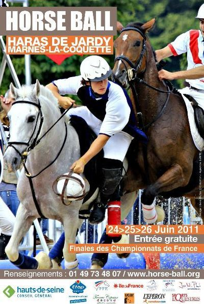 Un sport à découvrir: le horse ball