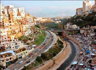 So close yet so hostile! Photo (c) Ibrahim Chalhoub.