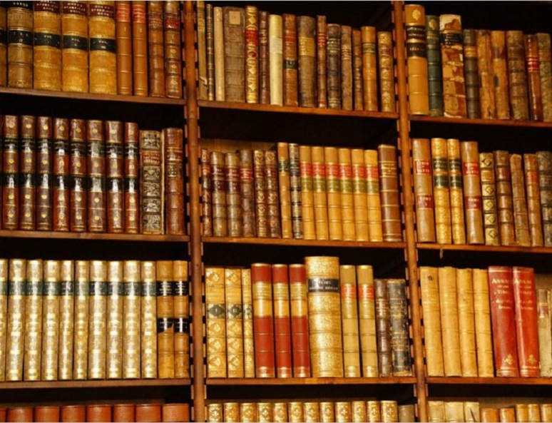 """""""Le Mystère Henri Pick"""" repose sur la découverte d'un manuscrit qui deviendra un best-seller. Photo (c) Efraimstochter"""