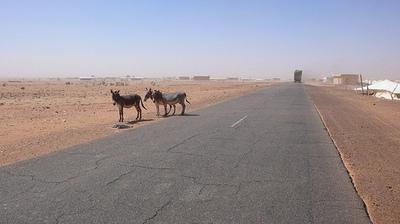 Mauritanie (c) Martin Baran