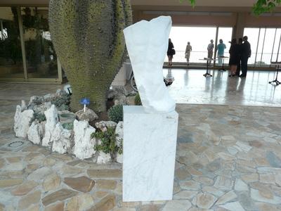 Une des sculptures de l'artiste Blake (c) Islem Salmi