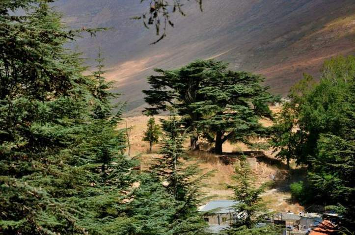 Dans les bras de la montagne. Photo (C) Ibrahim Chalhoub
