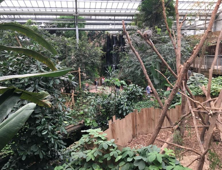 Le jardin tropical de Biotropica. Photo (c) Anne-Sophie Leroy