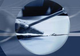 Cliquez sur l'image pour accéder au site officiel de l'orchestre