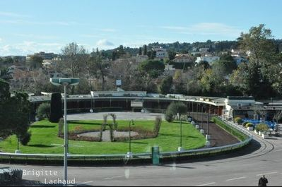 Meeting d'hiver 2011-2012 à l'Hippodrome Côte d'Azur