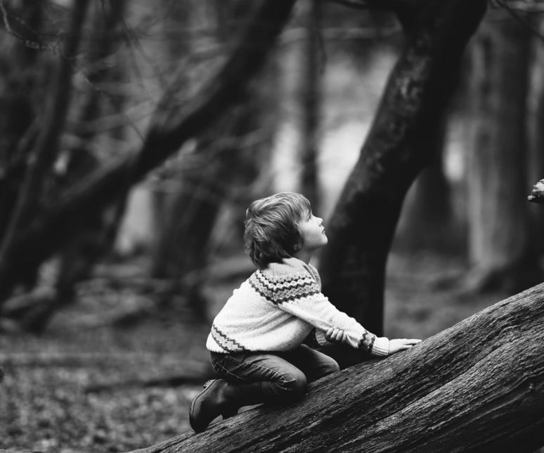 L'attachement de l'enfant à une figure tutélaire correspond à un processus évolutif de l'espèce humaine, nécessaire à son développement, de même que chez les primates et d'autres espèces. / (c) Photo d'Annie Spratt sur Unsplash