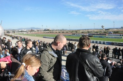 Défi du galop à l'Hippodrome Côte d'Azur 2012