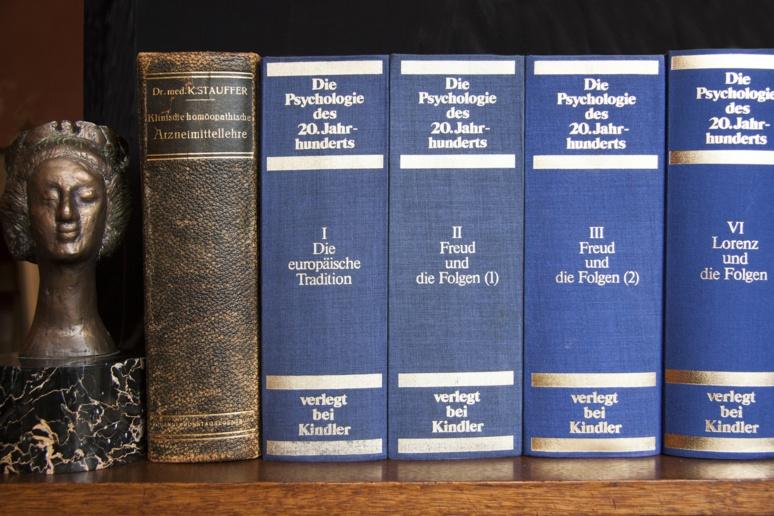 """«L'œuvre de Freud est aujourd'hui accessible dans son entier, sous différentes traductions.Ce qui est propre à la France – pays où l'influence freudienne a été et reste très marquée –, c'est qu'on n'a pas eu de traduction de l'œuvre complète par un seul auteur ou par un groupe restreint de traducteurs . L'œuvre de Freud n'appartient plus aux psychanalystes. Freud est devenu pour ainsi dire """"laïc"""".» Élisabeth Roudinesco / (c) Unsplash"""