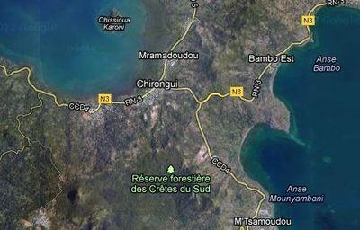 MAYOTTE: Découverte d'une femme pendue dans la mangrove au sud de l'île