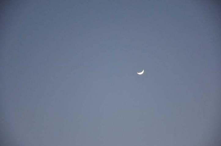 Qu'est-ce que vous voyez? Photo (C) Ibrahim Chalhoub