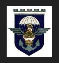 Insigne 17e régiment du génie parachutiste
