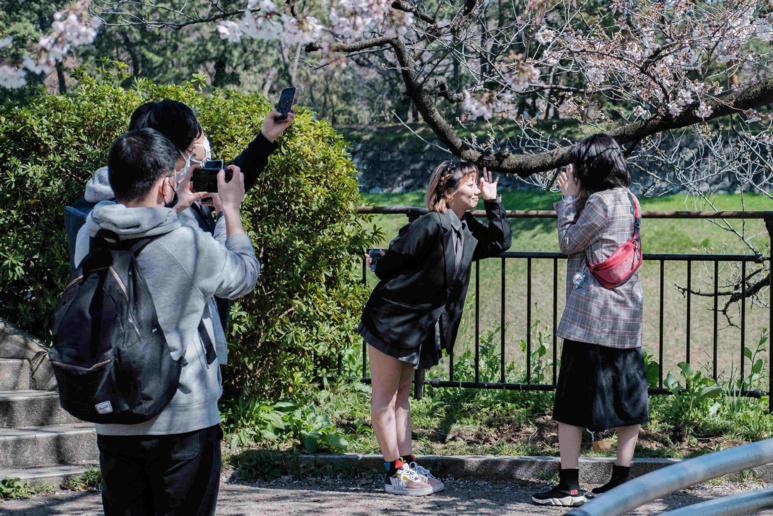 La floraison des cerisiers n'incite pas la population à rester à la maison, malgré les recommandations des autorités. ©Florent Guérout