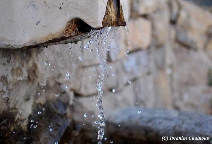 Au ralentit! Photo (C) Ibrahim Chalhoub