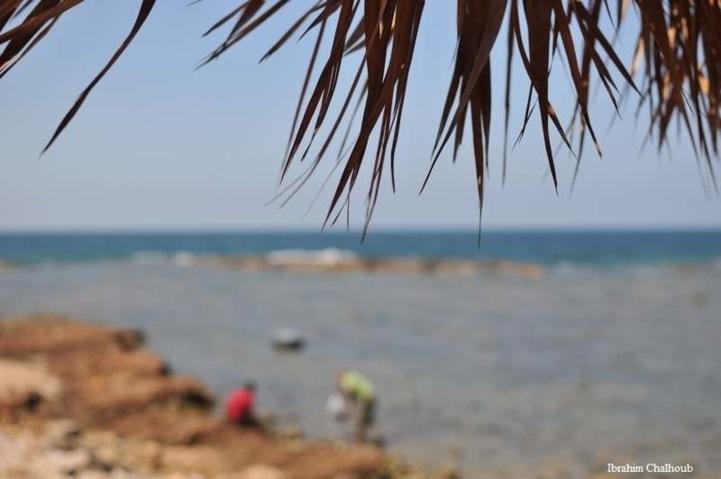 Ça vous dit? Photo (C) Ibrahim Chalhoub