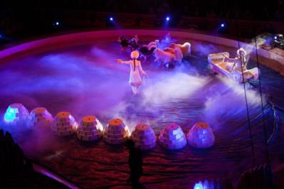 Cliquez sur l'image pour visiter le site du cirque