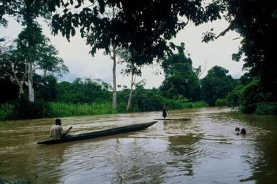 Pygmées Bongo traversant une rivière en pirogue à Ogooué-Lolo, au Gabon. (c) Paul Verdu
