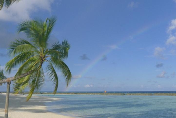 Photo (c) MBCI. Cliquez sur l'image pour visiter le site officielle de l'île