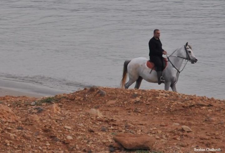 Entraînement nautique? Photo (C) Ibrahim Chalhoub