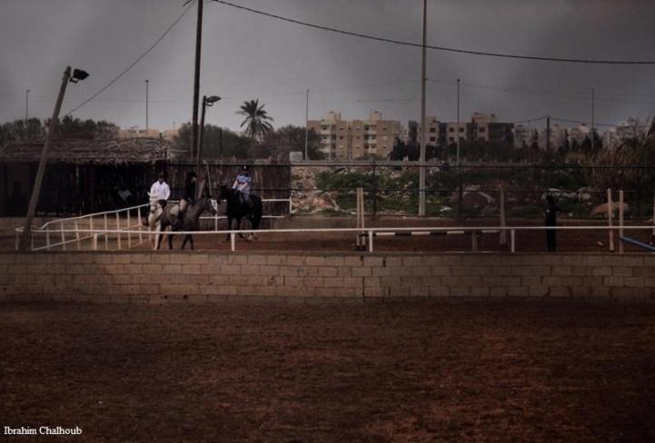 Leçon d'équitation! Photo (C) Ibrahim Chalhoub