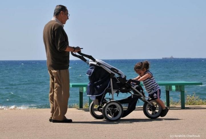 Qui pousse qui? Photo (C) Ibrahim Chalhoub